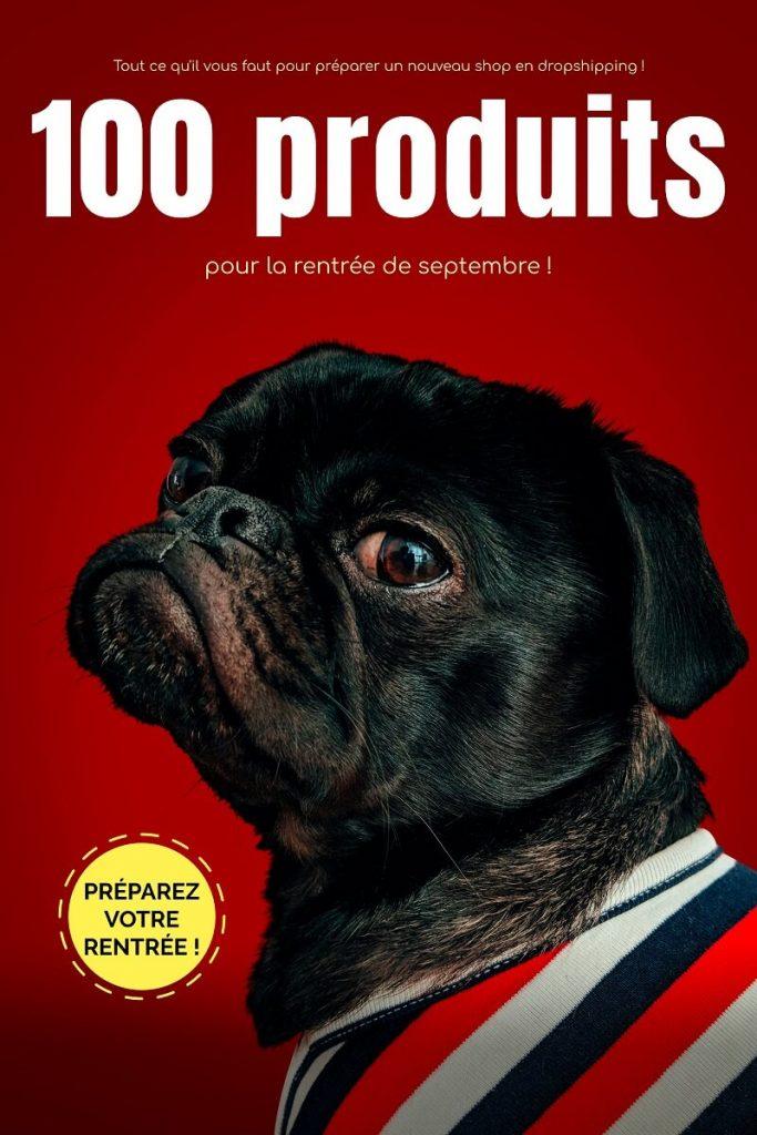 book cover maker for dog care training 517 683x1024 - Comment réaliser une fiche produit parfaite avec la méthode AIDA ?